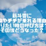 ドラゴンボール|筋斗雲に孫悟空やチチが乗れる理由や乗りたい時の呼び方は?その後どうなった?